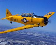 Aerobatic Flight Chicago, T-6 Texan - 30 Minutes