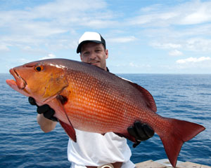 Deep sea fishing charter miami up to 6 people 6 hours for Deep sea fishing houston