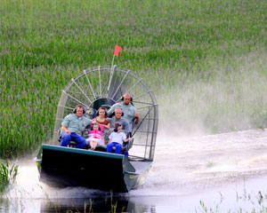 Everglades Airboat Tour, Orlando - 1 Hour