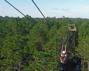 Ziplining Orlando 7 Zip Adventure 2 Hours 30 Minutes