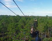 Ziplining Orlando - 2 Hours 30 Minutes