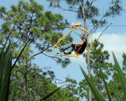 Cypress Canopy Cycle, Orlando - 1 Hour Tour