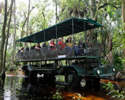 Trail Buggy Safari, Orlando - 2 Hours