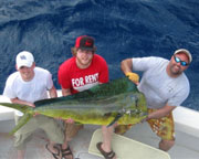 Fort Lauderdale Sport Fishing Charter - 4 Hours