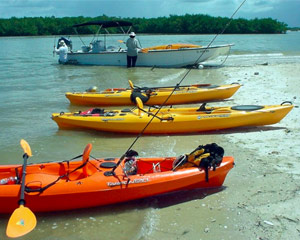 Boat Assisted Kayak Eco Tour - Florida Everglades