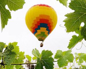 Hot Air Balloon Ride Temecula - 1 Hour Sunrise Flight