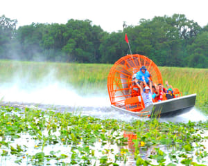 Orlando Airboat Swamp Tour 1 Hour