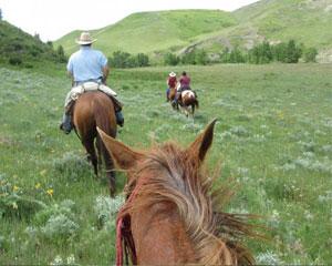 Horseback Riding, Glacier National Park - Full day