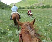 Horseback Riding, Glacier National Park - Full day