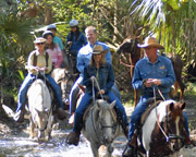 Horseback Riding Trail Adventure Orlando - 1 Hour 30 Minutes