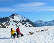 Dog Sled Ride Alaska with Helicopter Flight, Anchorage - 1 Hour 45 Minutes