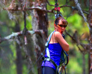 Zipline & Treetop Adventure Course, Tampa - 4 Hours