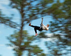 Zipline & Treetop Adventure Course, Tampa - 4 Hours