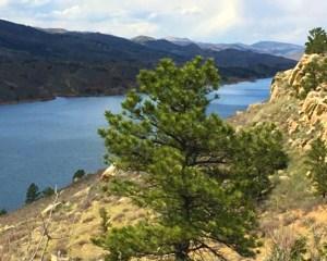 Bus Tour Fort Collins - 90 Minutes