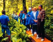 Ketchikan Rainforest Island Adventure - 4 Hours