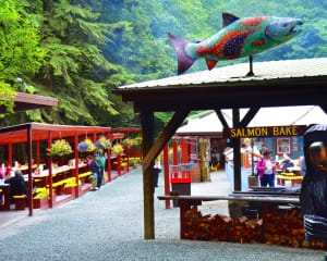 The Ultimate Juneau Experience, Whale Watching and Gold Creek Salmon Bake - 6 Hours