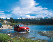 Denali Off-Road Jeep Tour - 3.5 Hours
