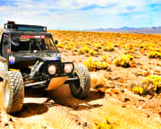 Off-Road RZR Drive Mojave Desert, Las Vegas - 2 Hours