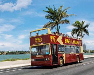 Open-top Bus Tour Miami - Day Pass