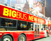 Bus Tour New York City, Downtown and Uptown - Two Day Pass