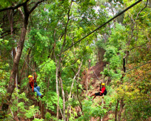 Waterfall Hike and Zipline Tour Maui - Half Day