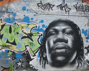 Bus Tour New York City, Brooklyn and Hip Hop History - 3 Hours