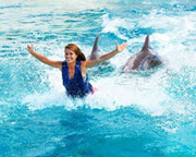 Dolphin Royal Swim Hawaii with Admission to Sea Life Park - 30 Minute Swim