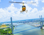 Helicopter Ride, Discovery Flight - Savannah