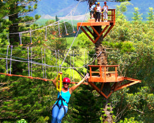 Zipline Treetop Tour Kauai - 3 Hours 30 Minutes