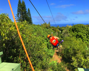 Zipline Maui, 4 Lines - 1.5 Hours
