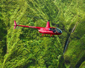 Private Helicopter Tour Hawai'i Big Island Waterfalls - 75 Minutes