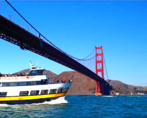 San Francisco Bay Cruise Adventure - 1 Hour Tour