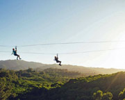 Ziplining Oahu North Shore, 8 Lines - 3 Hours
