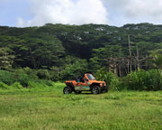 Oahu Dune Buggy Offroad Eco Tour, North Shore - 2 Hours
