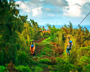 Zipline Oahu North Shore, 8 Lines - 3 Hours (Includes Transportation from Waikiki)