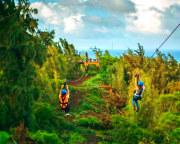 Ziplining Oahu North Shore, 8 Lines - 3 Hours (Includes Transportation from Waikiki)