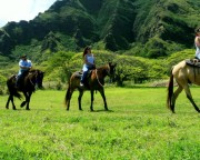 Horseback Riding Oahu, Kualoa Ranch - 1 Hour