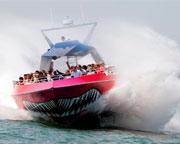 Codzilla Speed Boat Ride, Boston - 40 Minutes