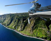 Helicopter Tour Big Island, Kohala Mountains and Hamakua Waterfalls - 35 Minutes