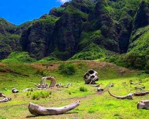 Oahu Premier Movie Sites Tour, Kualoa Ranch - 2.5 Hours