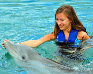Dolphin Odyssey Miami with Admission to Seaquarium - 30 Minute Swim with Dorsal Pull