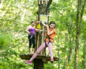 Zipline Treetop Adventure, Washington DC, Derwood - 2 Hours 30 Minutes