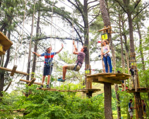 Zipline Treetop Adventure, Kansas City- 2 Hours 30 Minutes