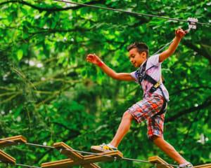 Zipline Treetop Adventure, Plano - 2 Hours 30 Minutes