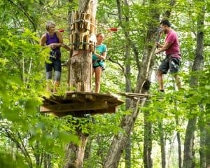 Zipline Treetop Adventure Virginia, Alexandria - 2 Hours 30 Minutes