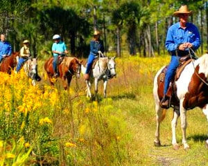 Horseback Riding Orlando, Cattle Drive Adventure - 2 Hours