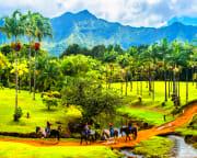 Horseback Ride Kauai Discovery Tour - 1 Hour 30 Minutes