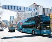 San Diego Bus Tour, 1 Day Hop-On Hop-Off Tour
