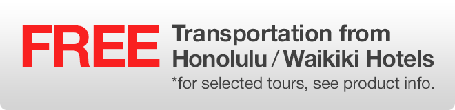 Free Transportation from hotels on selected tours